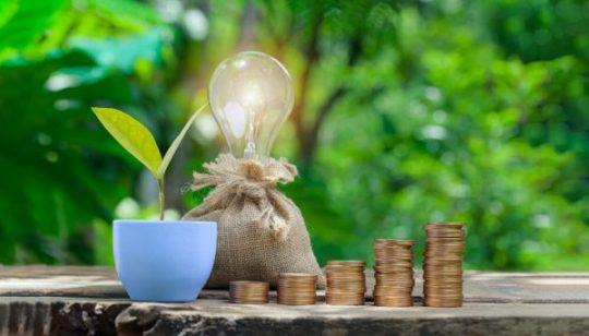 Apa Itu Portofolio Investasi, dan Bagaimana Cara Menyusunnya secara Pas?